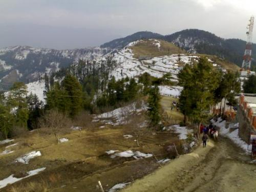 place place to visit in shimla